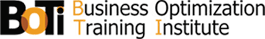 Business Optimization Training Institute